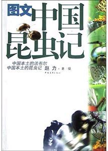 图文中国昆虫记