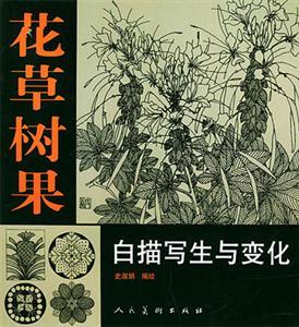 花草树果白描写生与变化